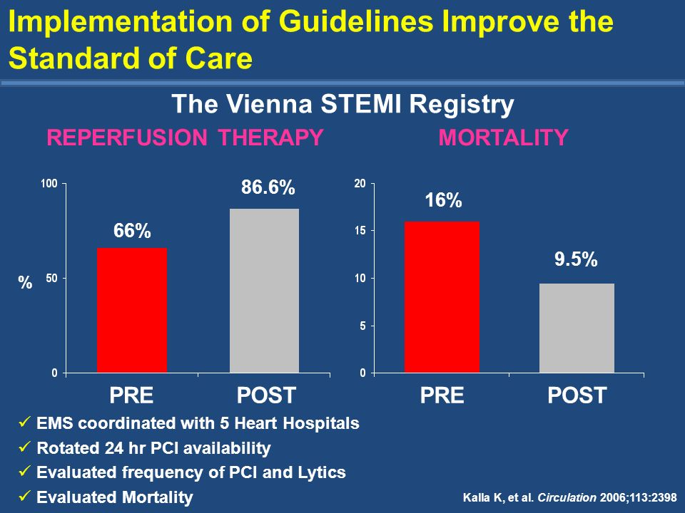 The Vienna STEMI Registry