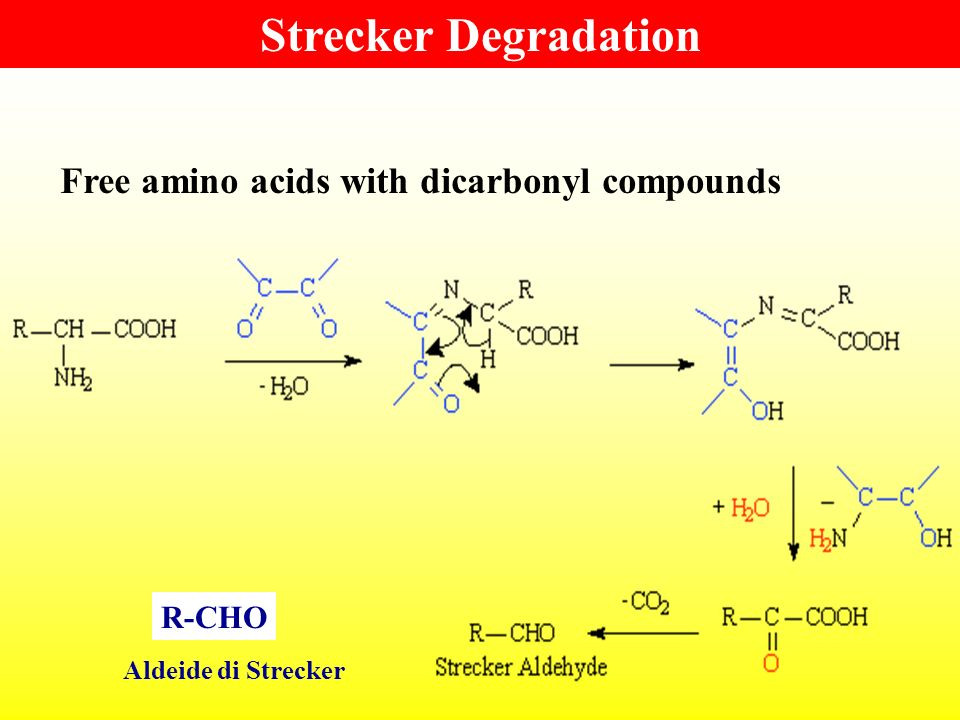 Strecker Degradation Free amino acids with dicarbonyl compounds R-CHO
