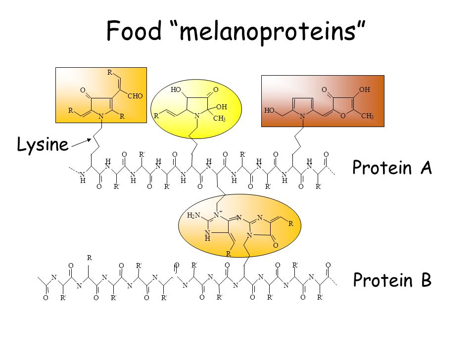 Food melanoproteins