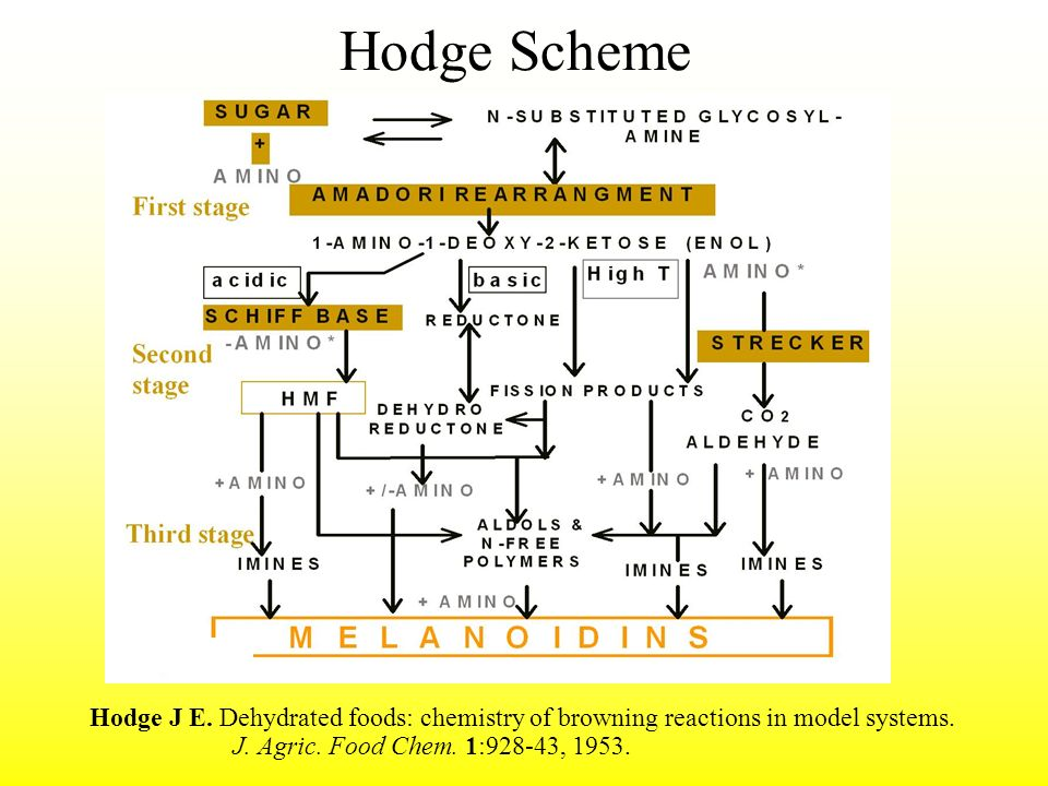 Hodge Scheme Hodge J E. Dehydrated foods: chemistry of browning reactions in model systems.