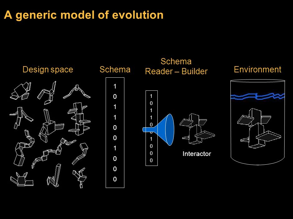 A generic model of evolution