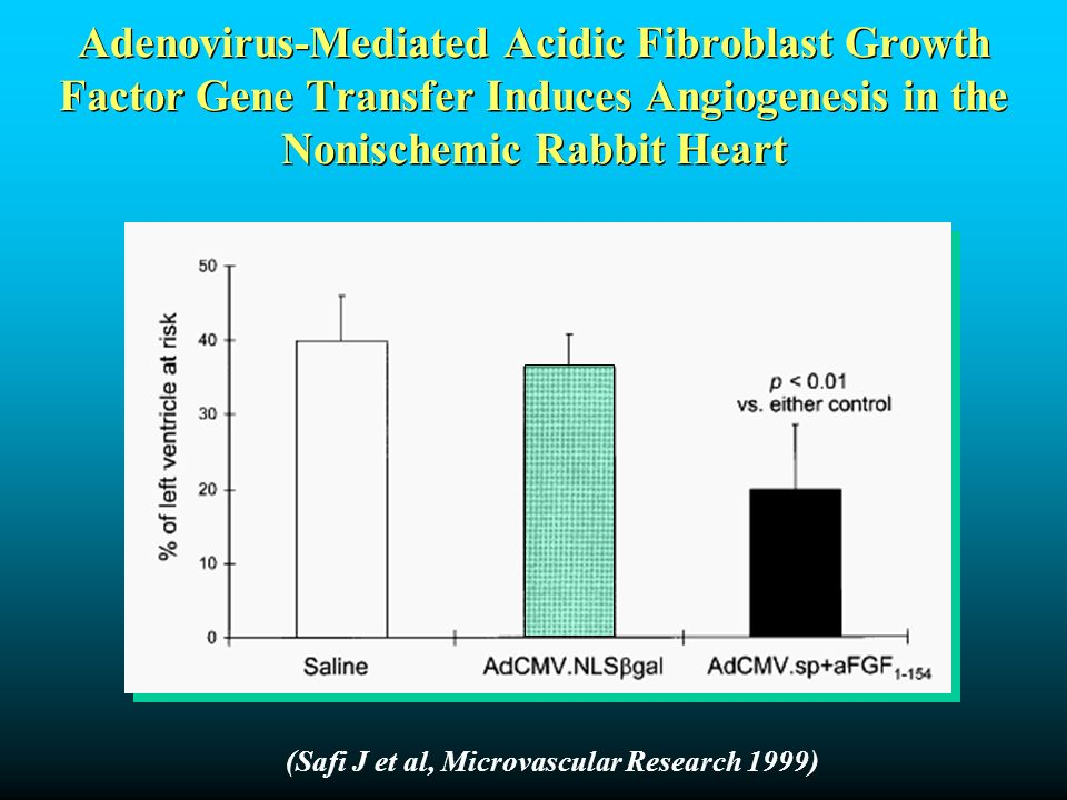 Adenovirus-Mediated Acidic Fibroblast Growth Factor Gene Transfer Induces Angiogenesis in the Nonischemic Rabbit Heart