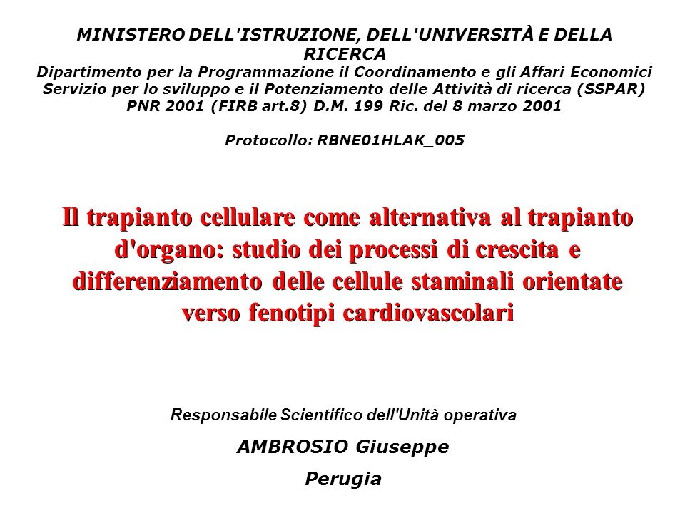 Responsabile Scientifico dell Unità operativa