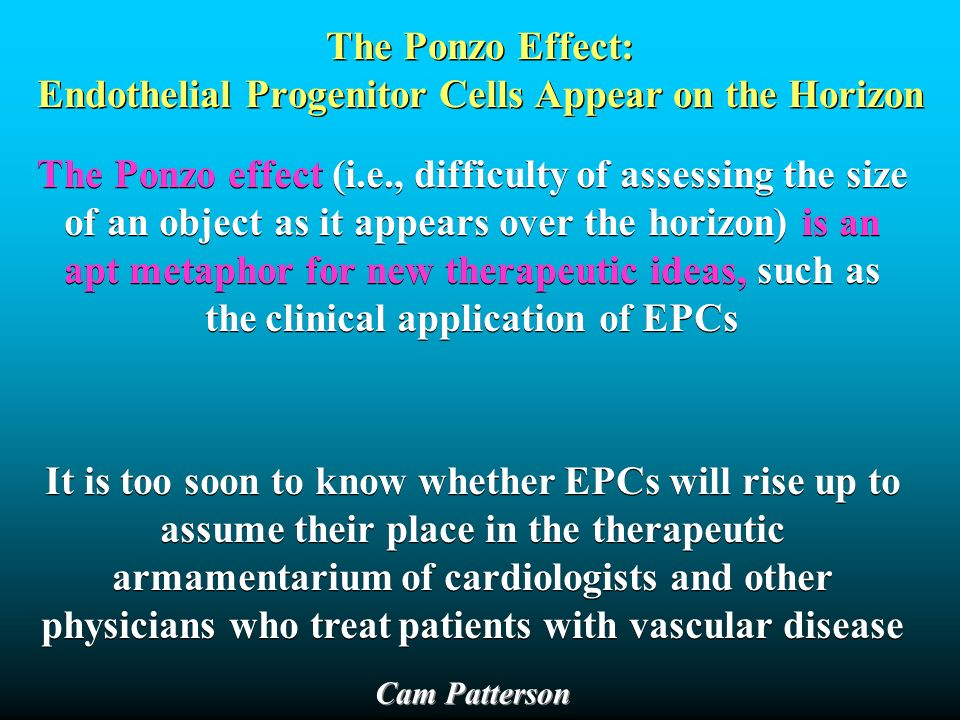 The Ponzo Effect: Endothelial Progenitor Cells Appear on the Horizon