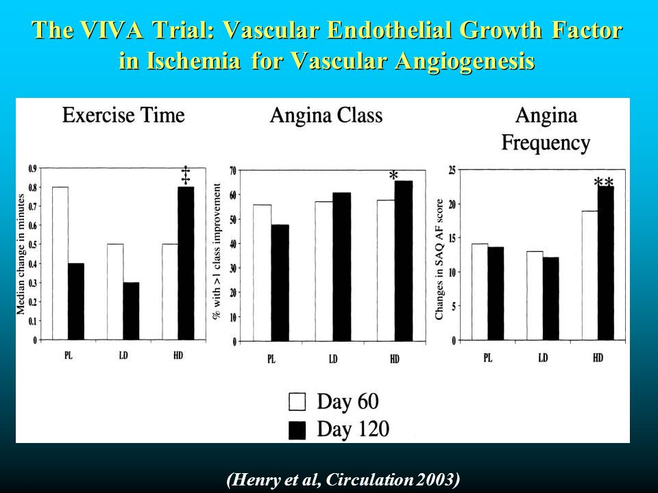 The VIVA Trial: Vascular Endothelial Growth Factor in Ischemia for Vascular Angiogenesis