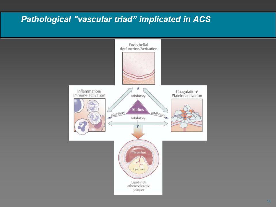 Pathological vascular triad implicated in ACS