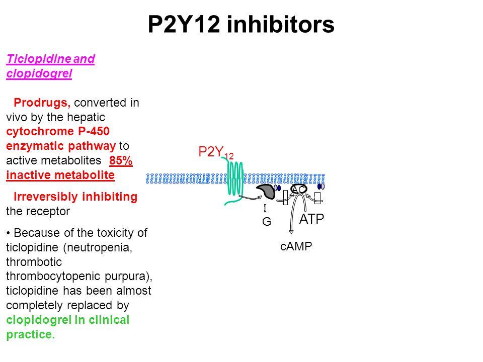 P2Y12 inhibitors P2Y12 ATP Ticlopidine and clopidogrel