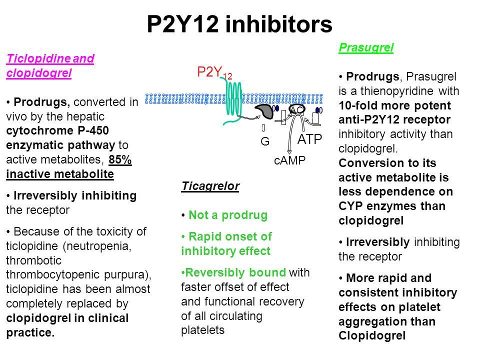 P2Y12 inhibitors P2Y12 ATP Prasugrel Ticlopidine and clopidogrel