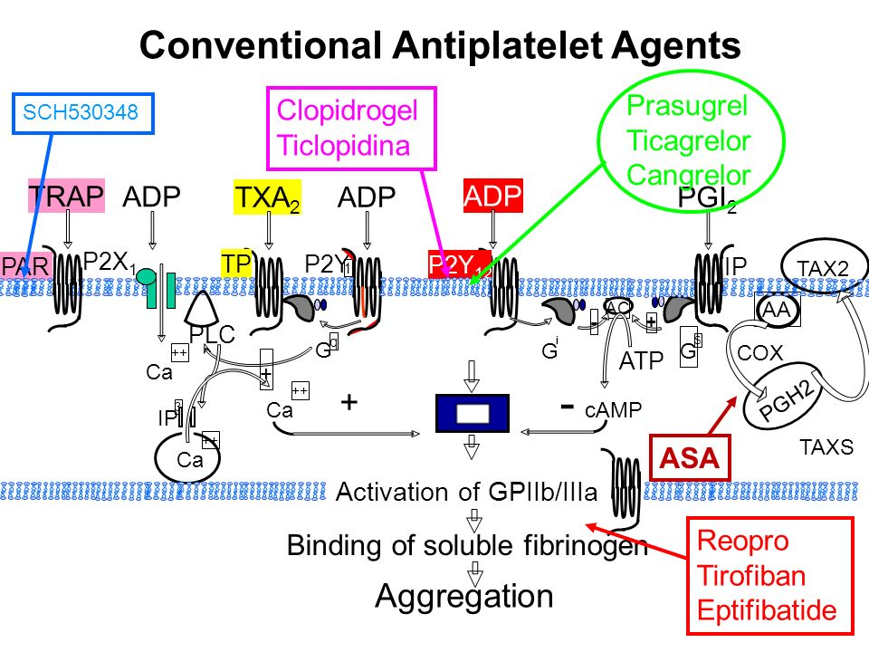 Conventional Antiplatelet Agents