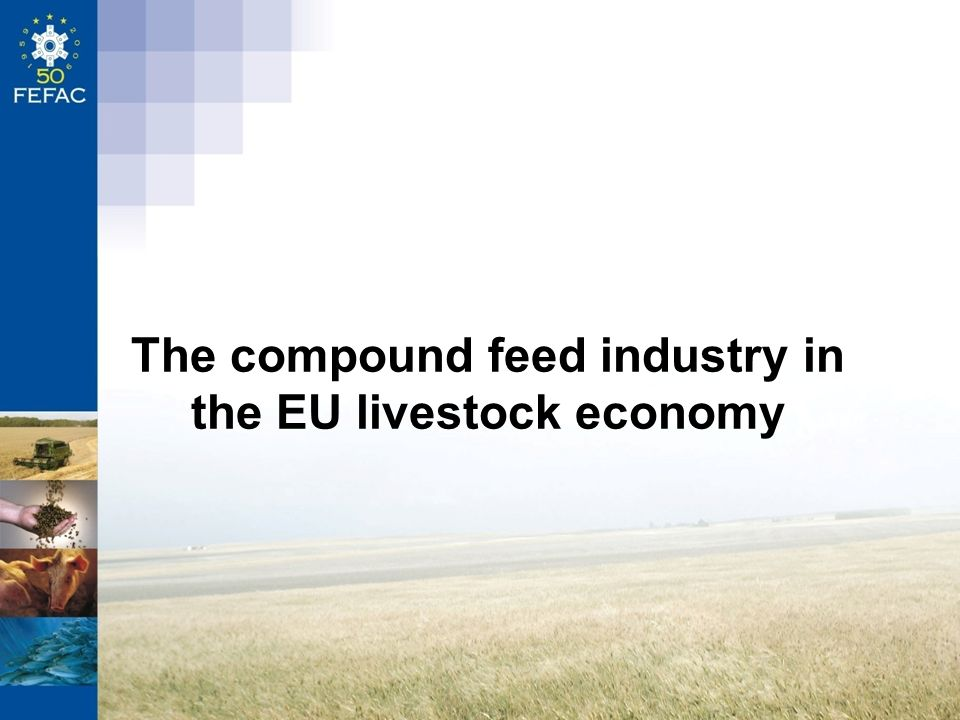 The compound feed industry in the EU livestock economy