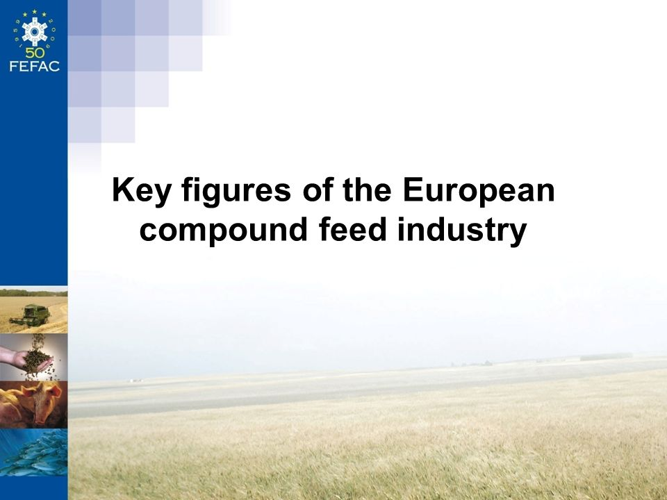 Key figures of the European compound feed industry