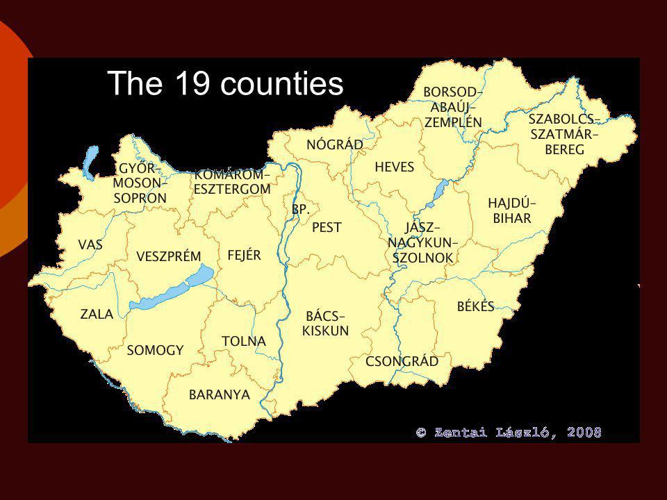 The 19 counties