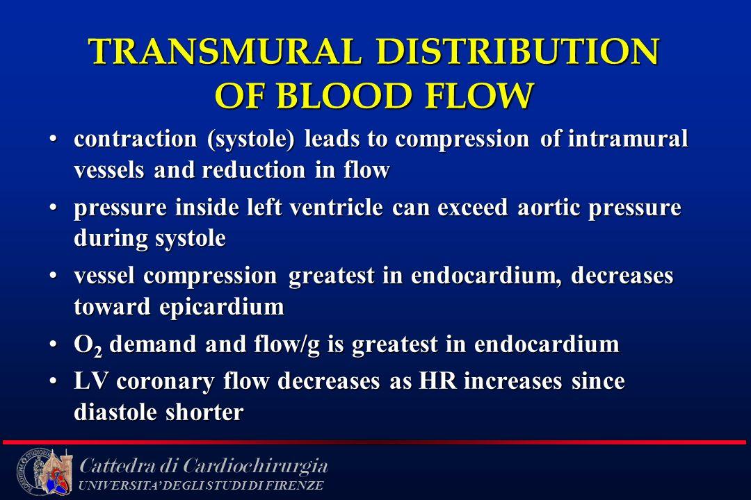 TRANSMURAL DISTRIBUTION OF BLOOD FLOW