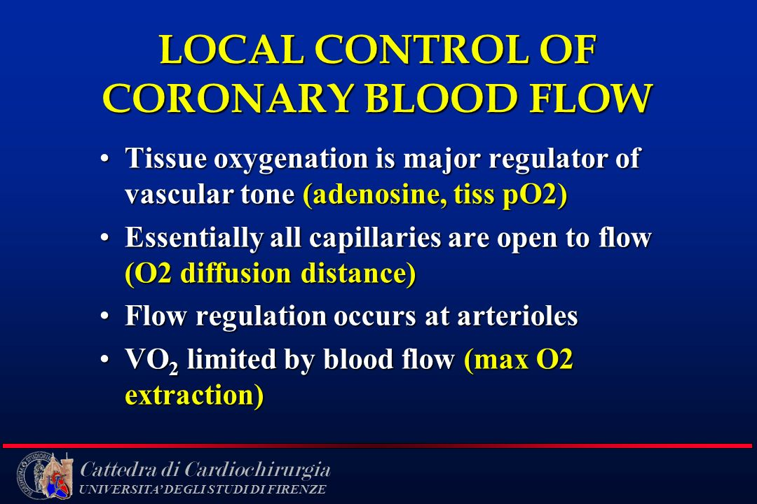 LOCAL CONTROL OF CORONARY BLOOD FLOW