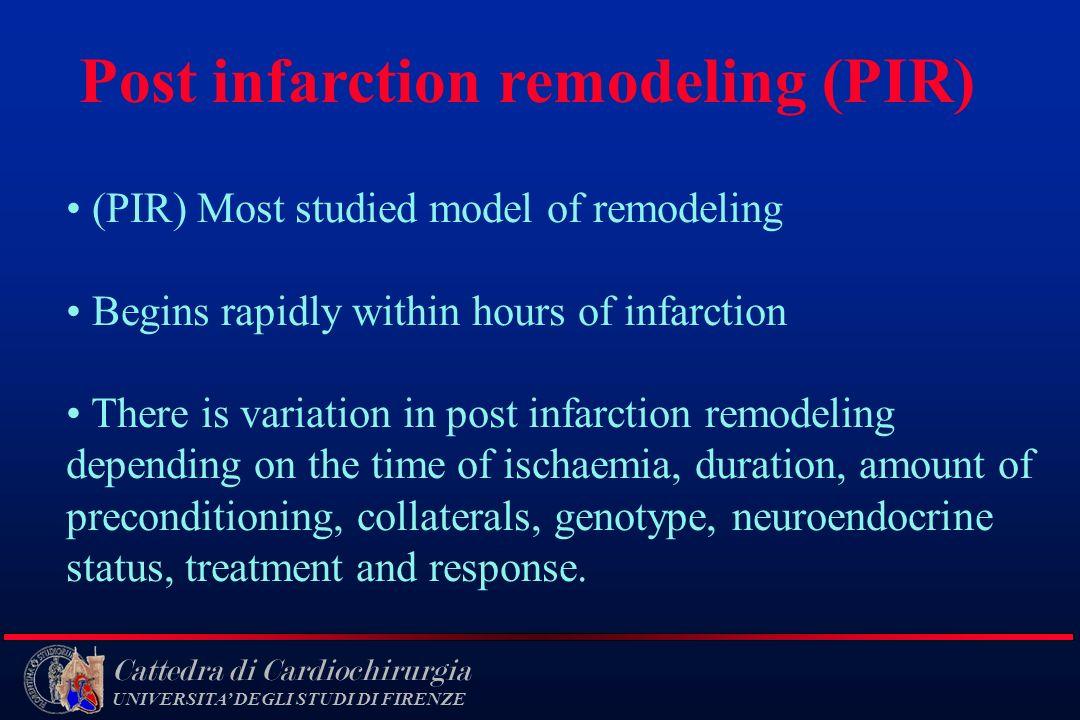 Post infarction remodeling (PIR)