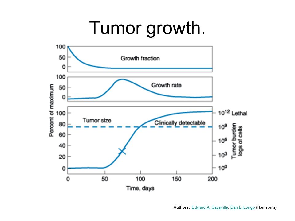 Tumor growth. Authors: Edward A. Sausville, Dan L. Longo (Harrison's)