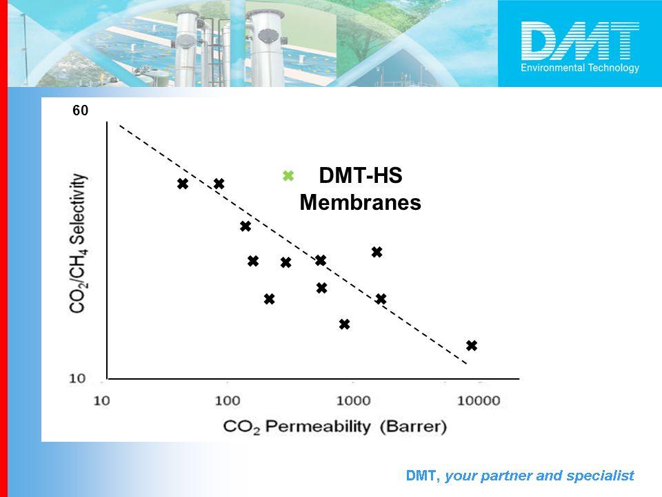 60 DMT-HS Membranes
