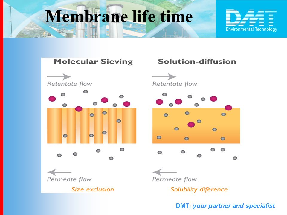 Membrane life time