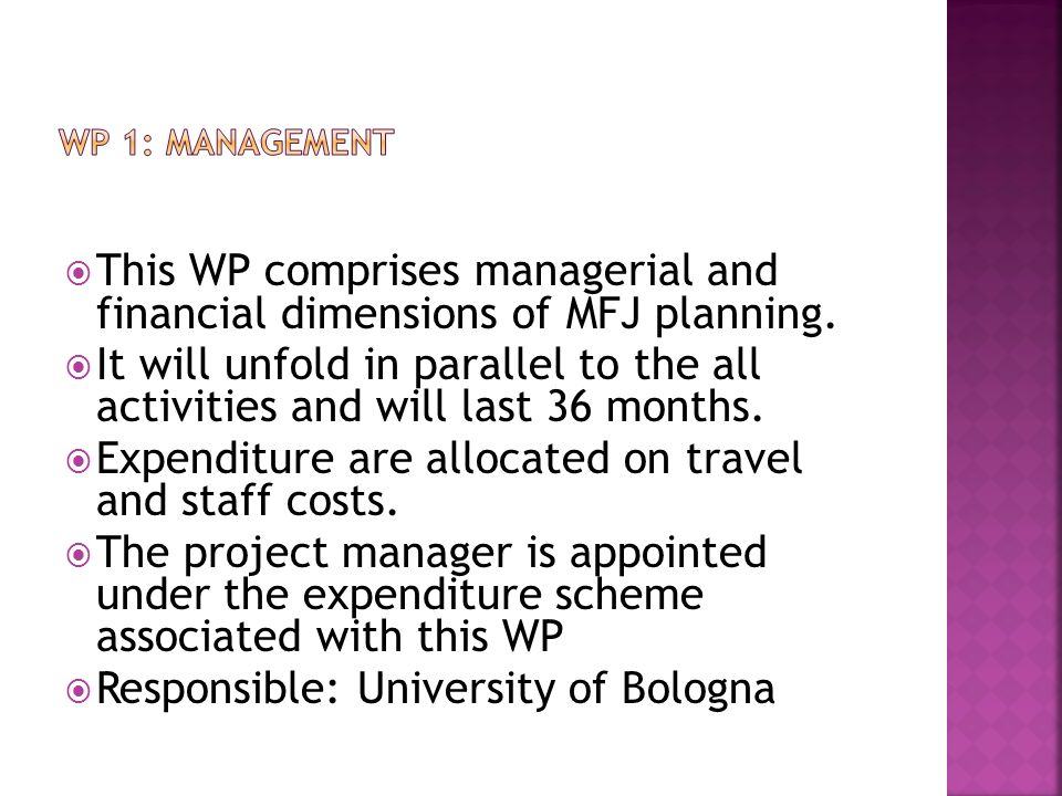 This WP comprises managerial and financial dimensions of MFJ planning.