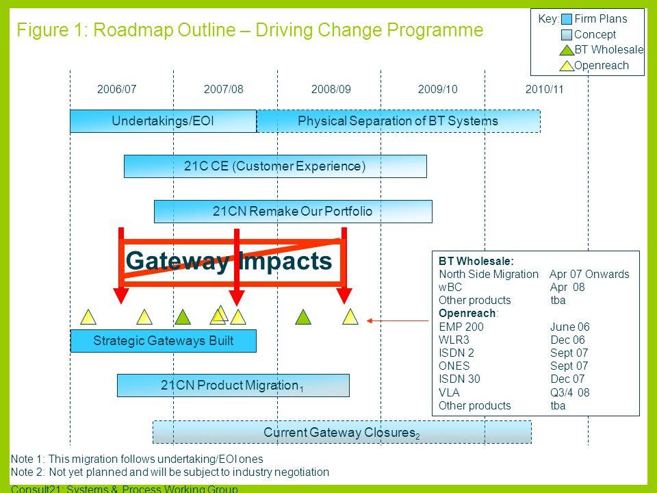Figure 1: Roadmap Outline – Driving Change Programme