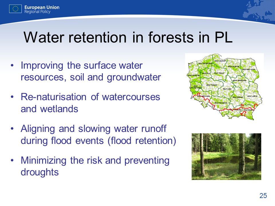 Water retention in forests in PL