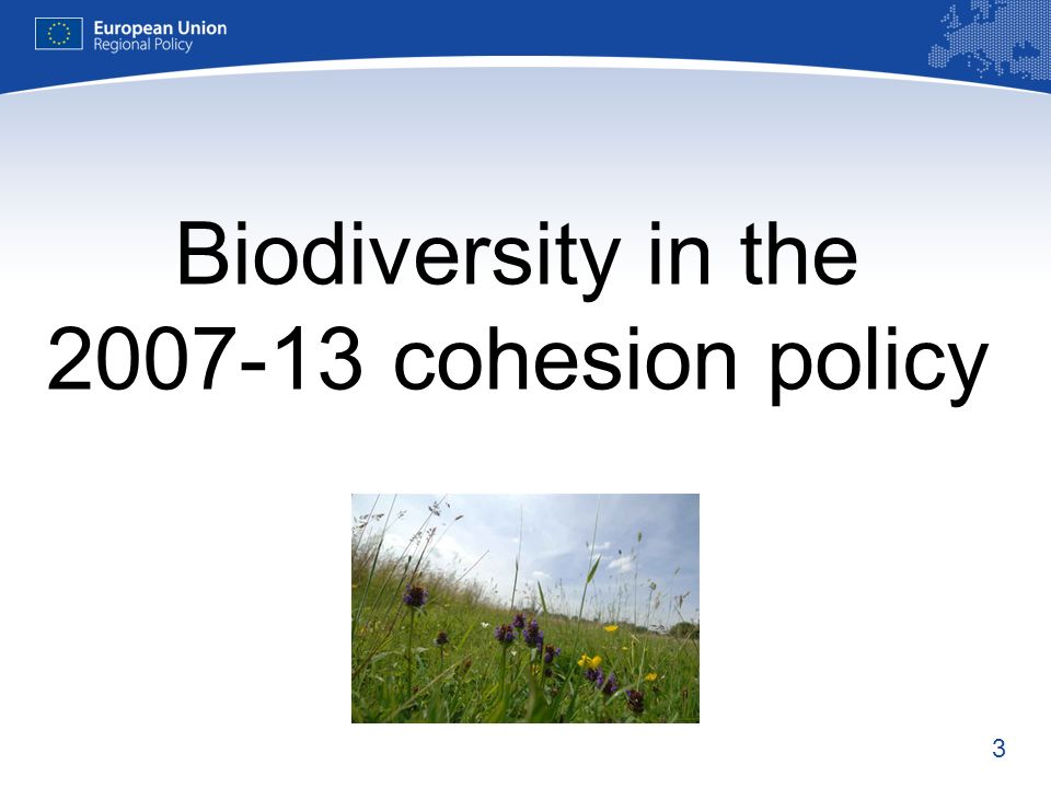 Biodiversity in the 2007-13 cohesion policy