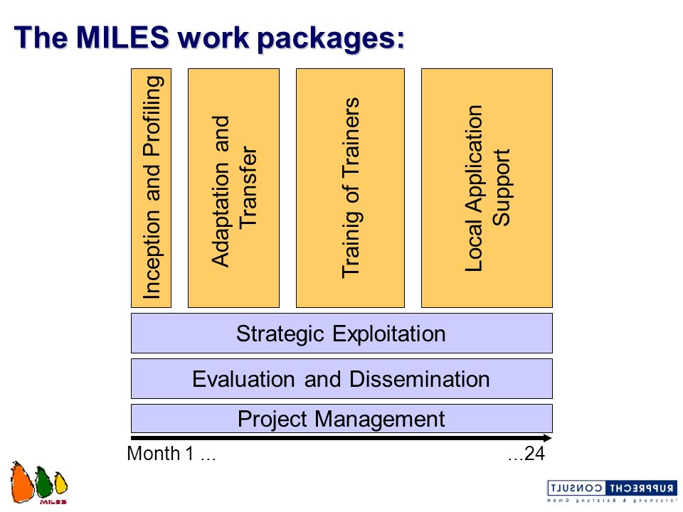 The MILES work packages:
