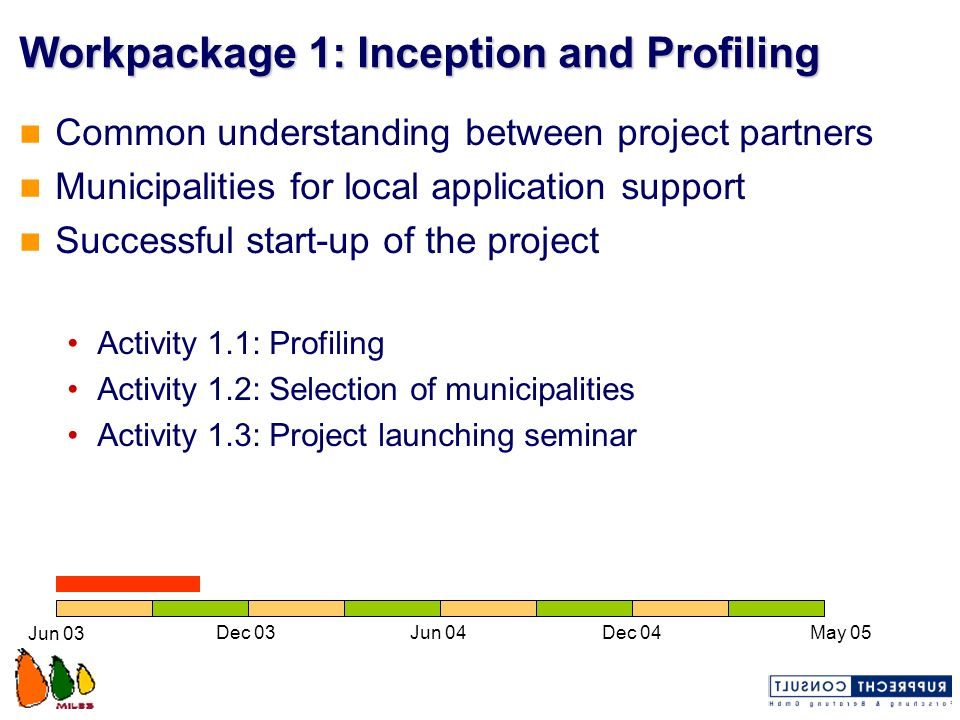 Workpackage 1: Inception and Profiling