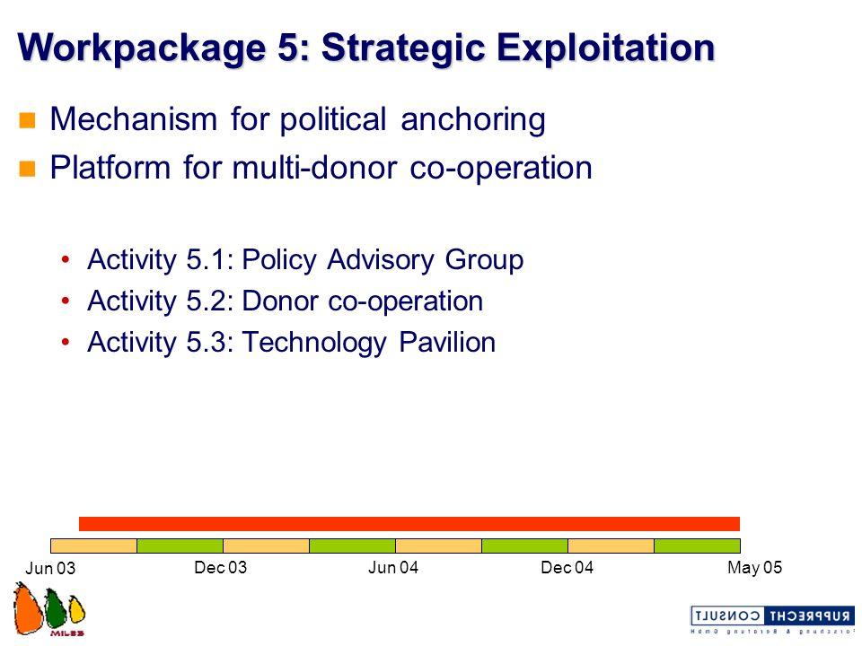 Workpackage 5: Strategic Exploitation