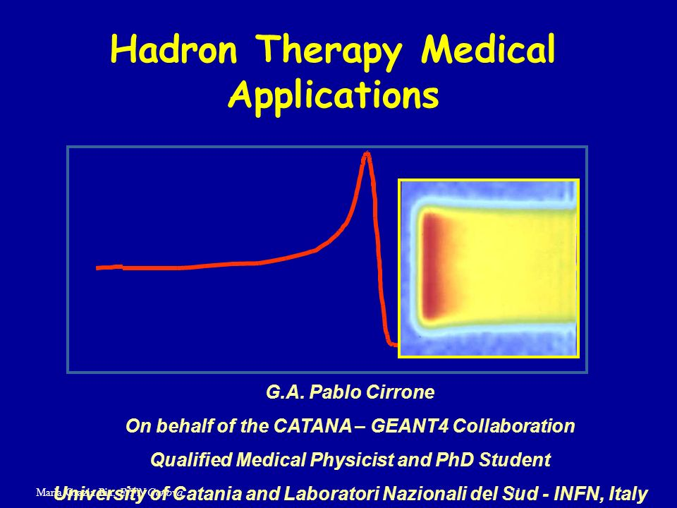 Hadron Therapy Medical Applications
