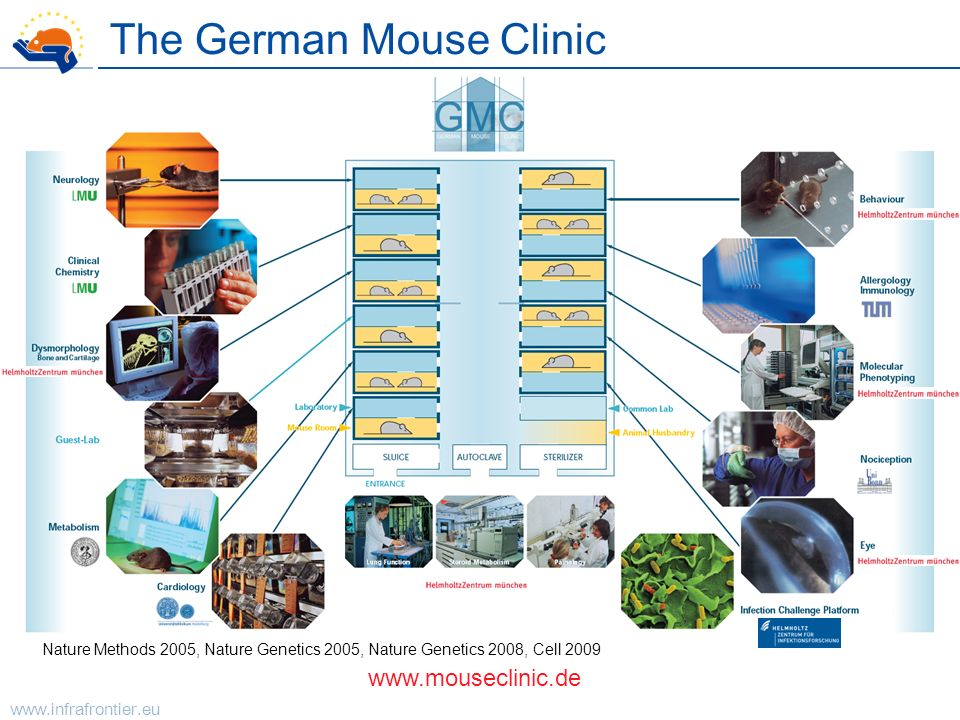 The German Mouse Clinic