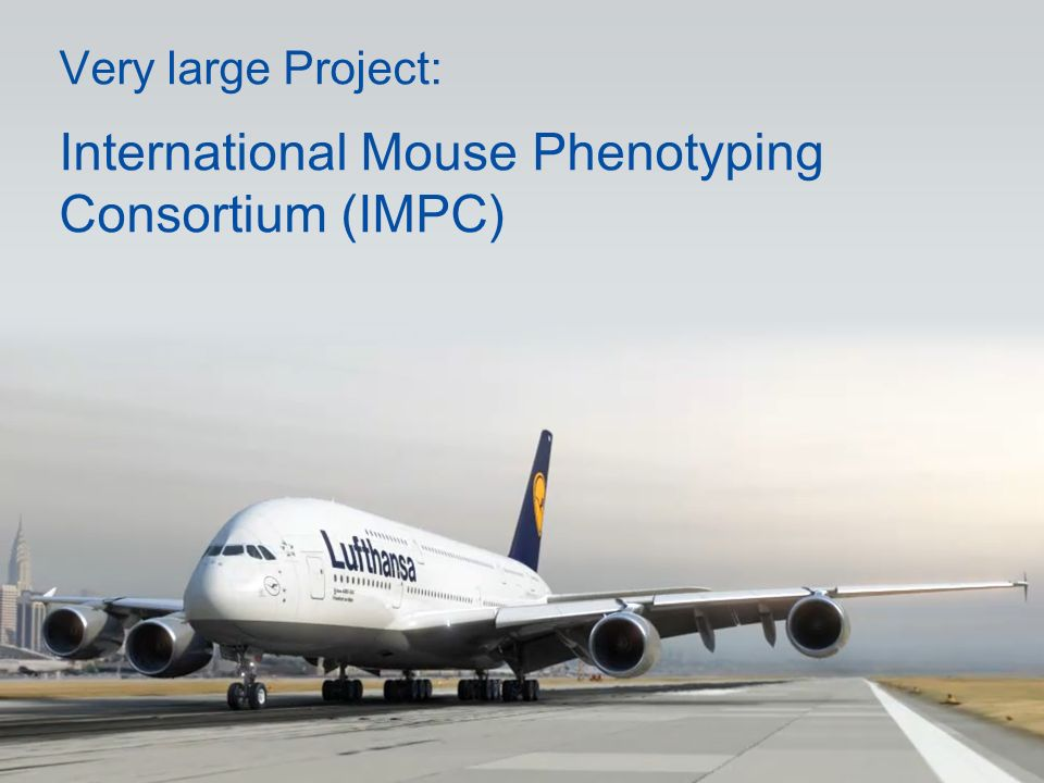 Very large Project: International Mouse Phenotyping Consortium (IMPC)