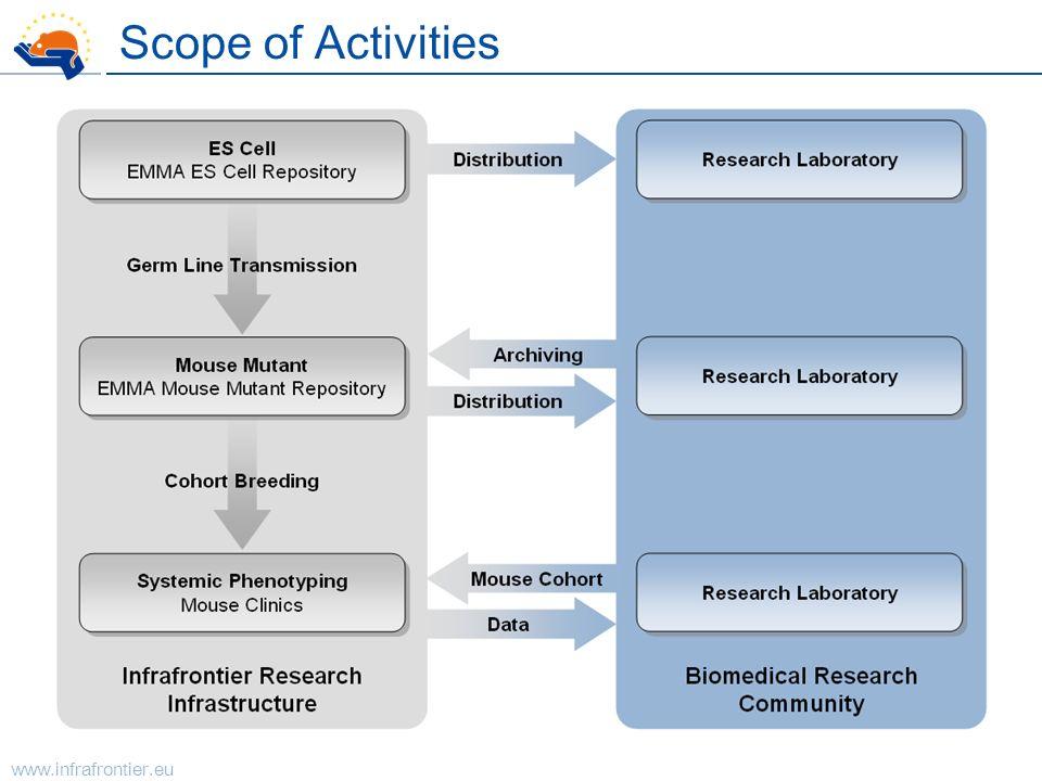 Scope of Activities