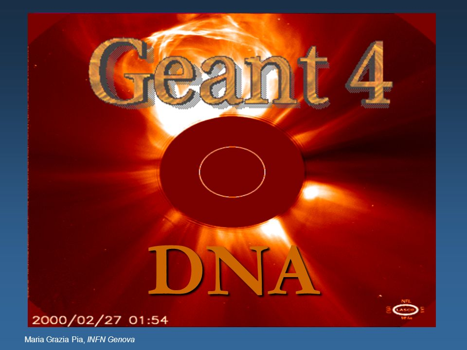 DNA Object Oriented technology + Geant4 architecture