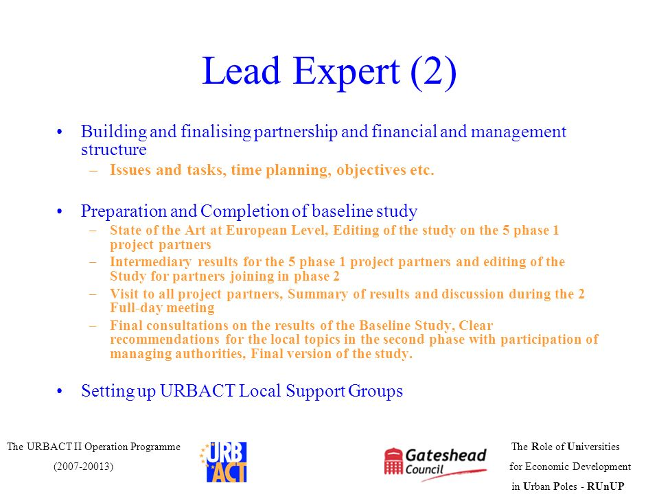 Lead Expert (2)Building and finalising partnership and financial and management structure. Issues and tasks, time planning, objectives etc.