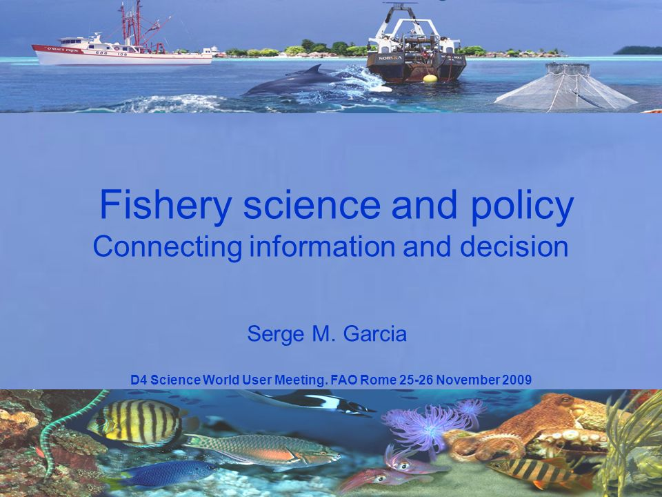 D4 Science World User Meeting. FAO Rome 25-26 November 2009