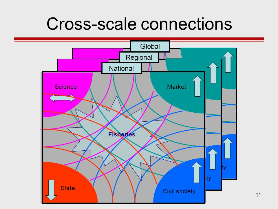 Cross-scale connections