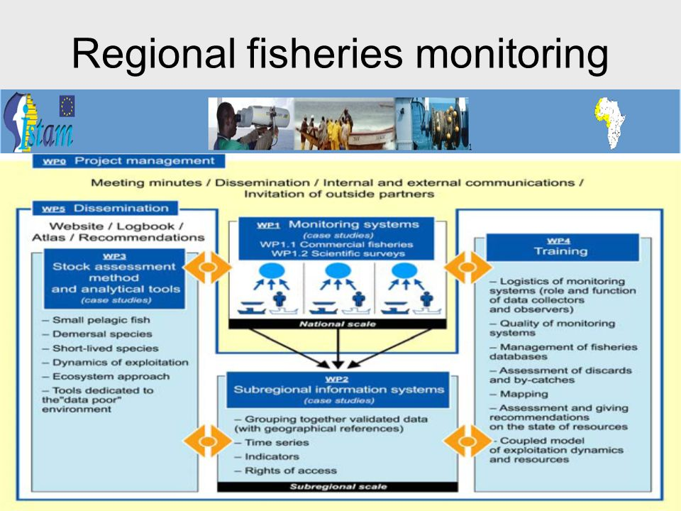 Regional fisheries monitoring