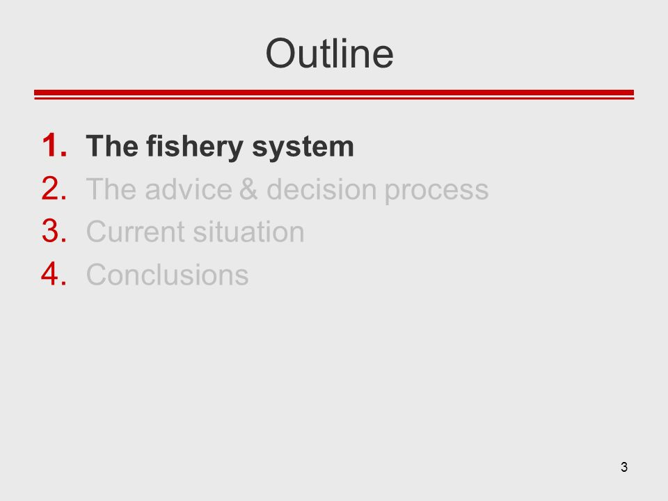 Outline The fishery system The advice & decision process