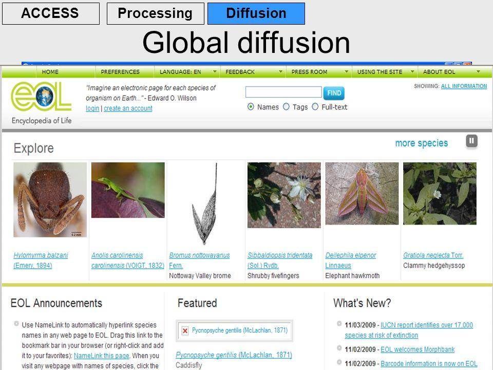 Global diffusion ACCESS Processing Diffusion
