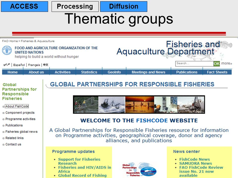 Thematic groups ACCESS Processing Diffusion Thematic groups