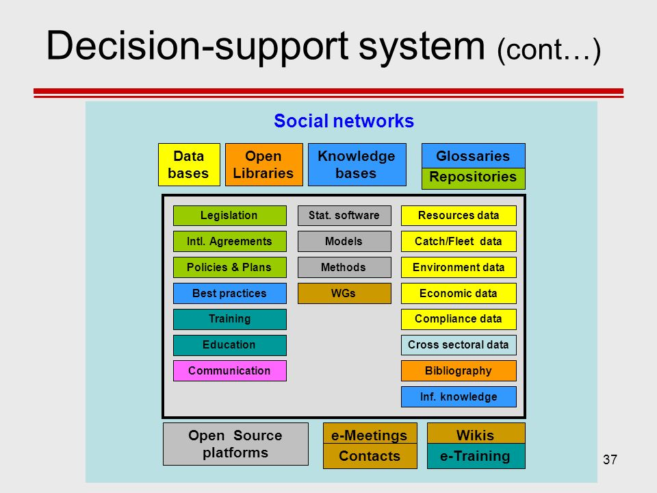Decision-support system (cont…)