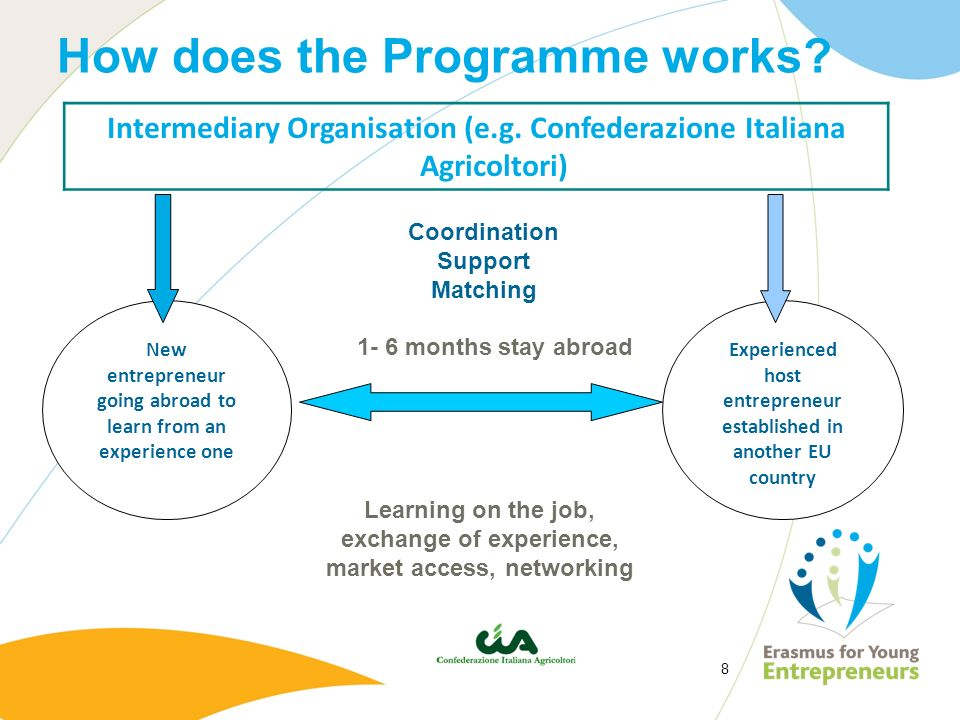 How does the Programme works