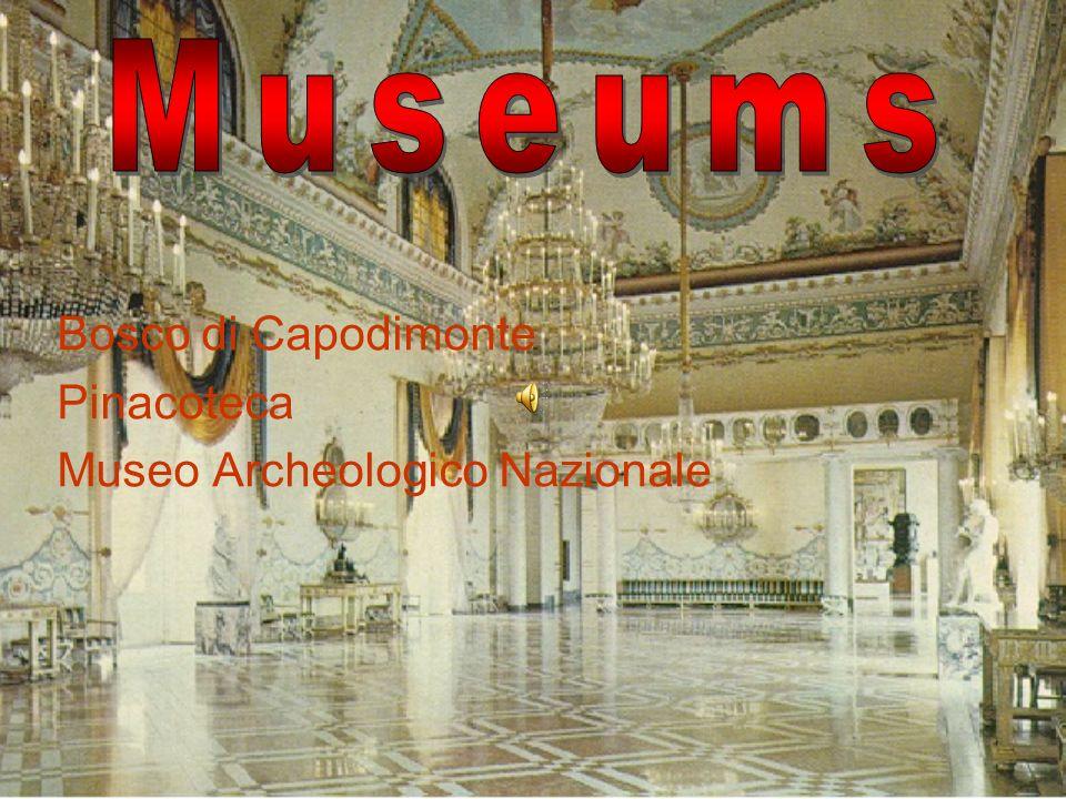 Museums Bosco di Capodimonte Pinacoteca Museo Archeologico Nazionale
