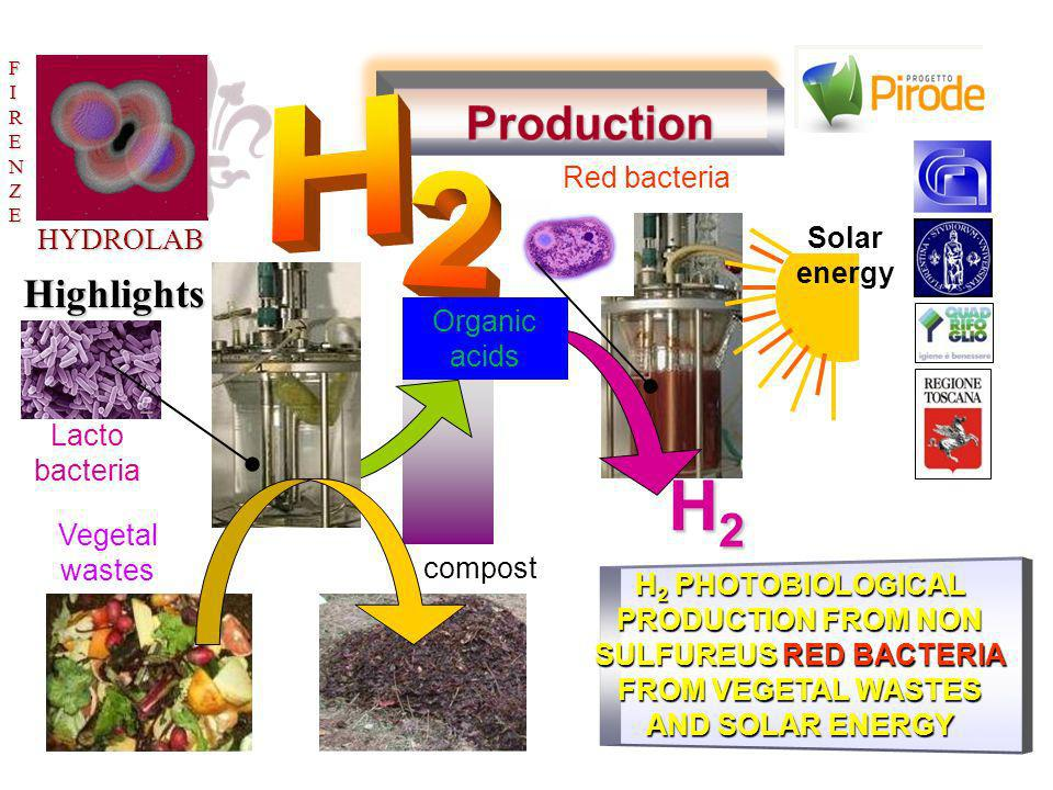 H2 Production H 2 Highlights Red bacteria HYDROLAB Solar energy