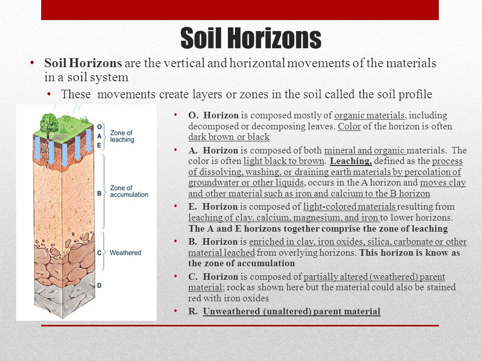 Subsidence and soils chapter ppt video online download for Soil zone of accumulation