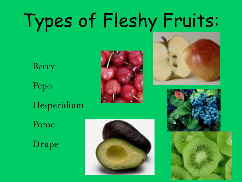 Types of Fleshy Fruits: