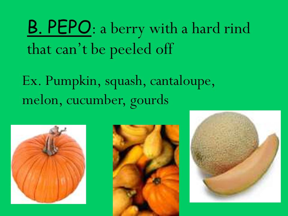 B. PEPO: a berry with a hard rind that can't be peeled off