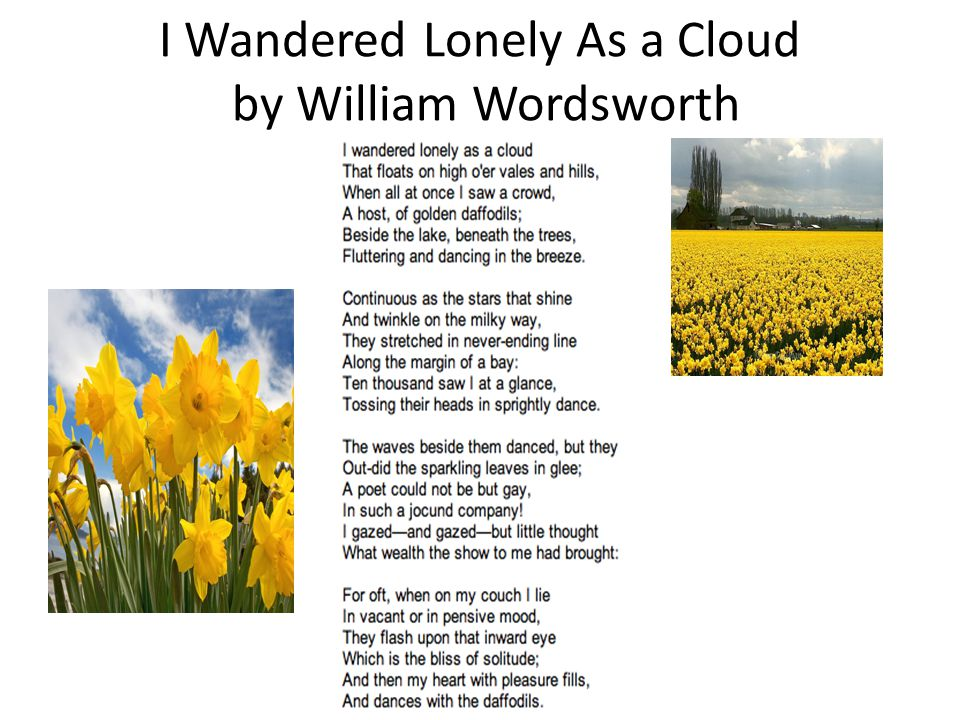I wandered lonely as a cloud by William Wordsworth - Assignment Example