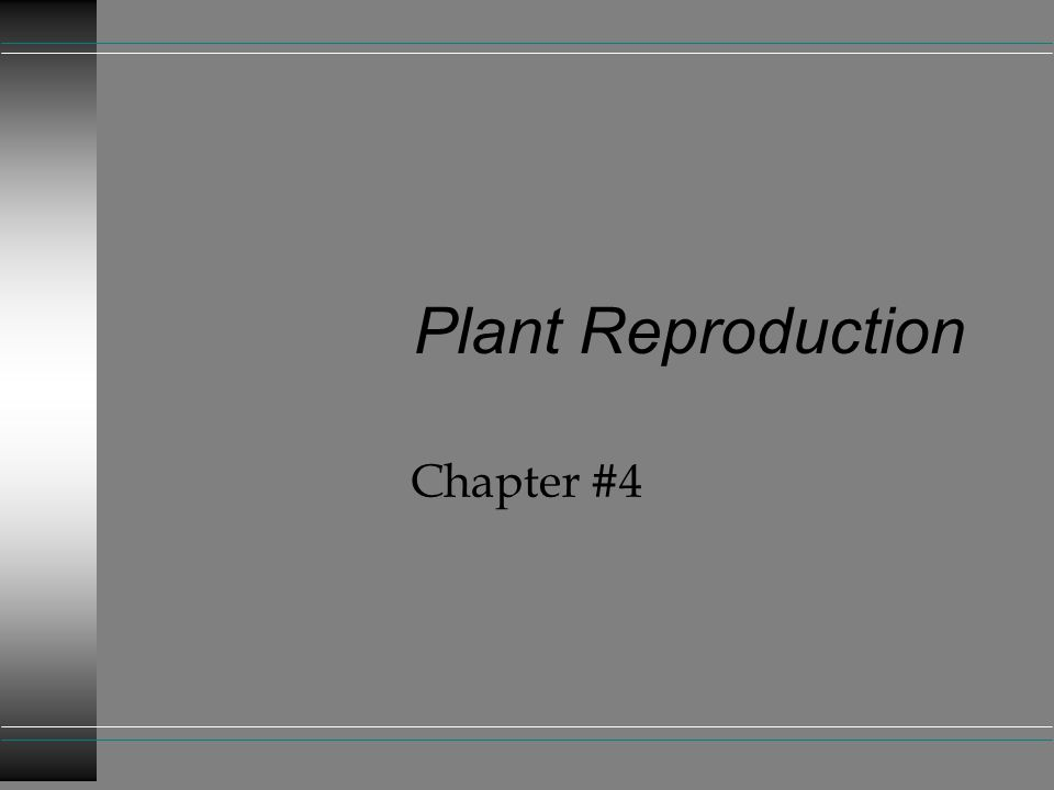 Plant Reproduction Chapter #4